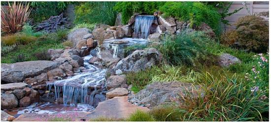 Ponds Water Features Insideoutside Spaces Denver